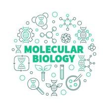 vector-molecular-biology-round-concept-illustration-thin-line-style_104589-20